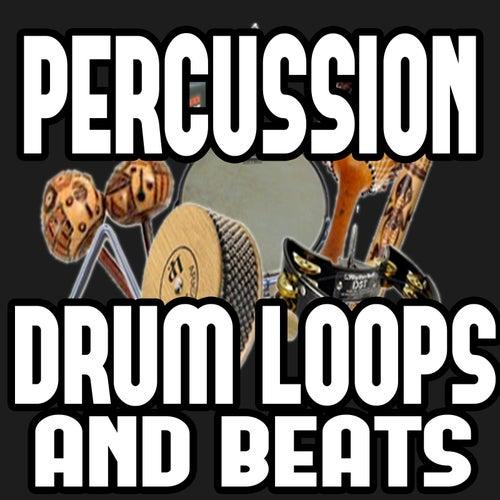 Percussion Drum Loop Beats, Royalty Free by Ultimate Drum Loops