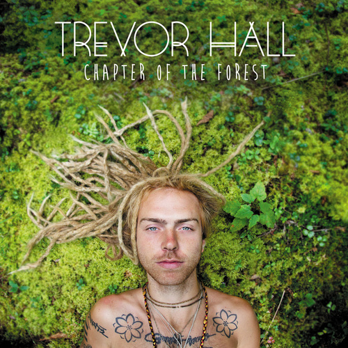 Chapter Of The Forest de Trevor Hall
