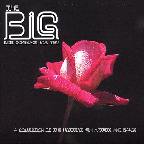 The Big Indie Comeback Volume 2 by Various Artists
