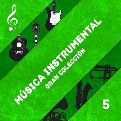 Grandes Temas Instrumentales (Volumen 5) von The Sunshine Orchestra