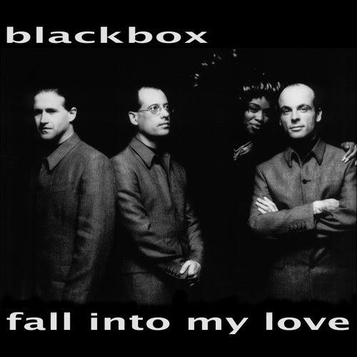 Fall into My Love de Black Box