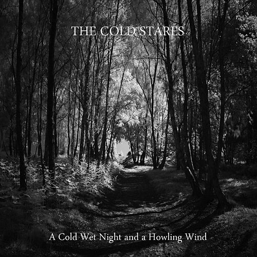 A Cold Wet Night and a Howling Wind von The Cold Stares