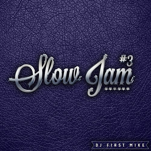 Slow Jam, Vol. 3 by Various Artists