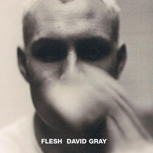 Flesh by David Gray