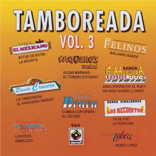 Tamboreada, Vol. 3 de Various Artists