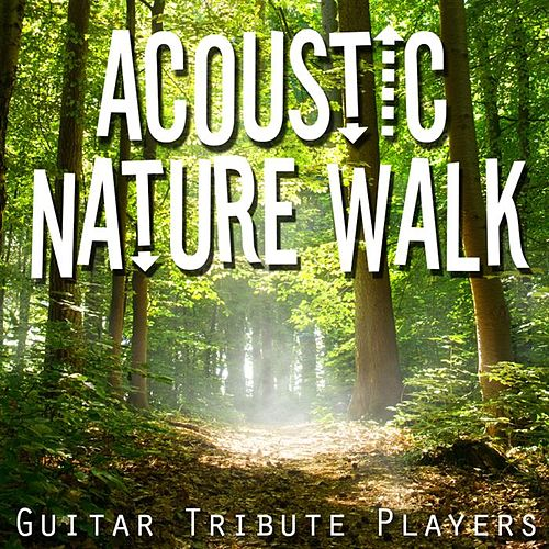 Acoustic Nature Walk de Guitar Tribute Players