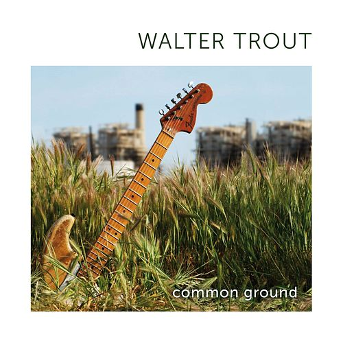 Common Ground by Walter Trout
