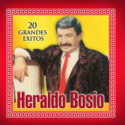 20 Grandes Éxitos by Heraldo Bosio