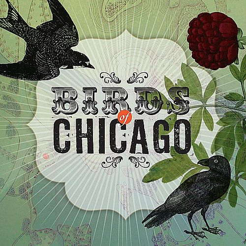 Birds of Chicago by Birds of Chicago