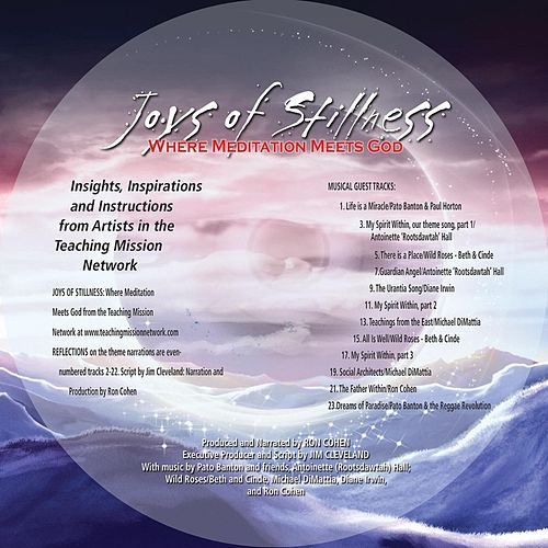 Joys of Stillness: Where Meditation Meets God de Various Artists