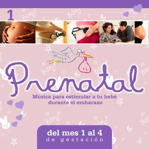 Prenatal, Vol. 1 / Música para Estimular a Tu Bebé Durante el Embarazo de Antonio Cortazzi