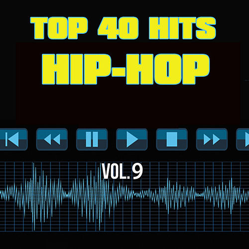 Top 40 Hits Hip Hop, Vol. 9 de Unknown