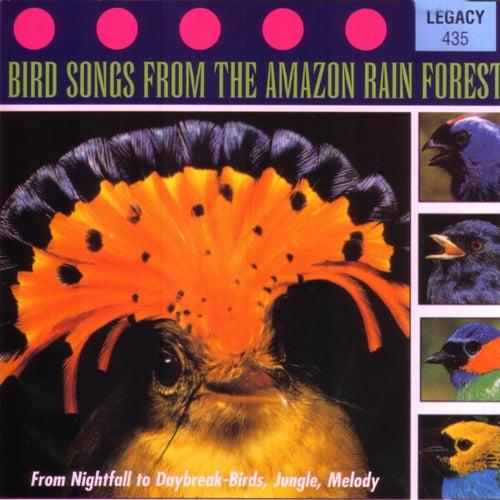 Bird Songs of Amazon Rainforest by Environmental