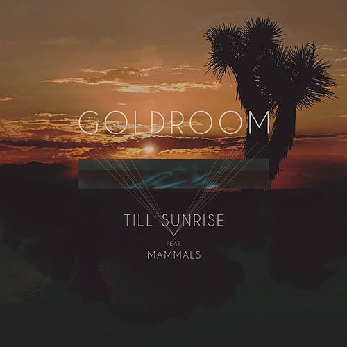 Till Sunrise (feat. Mammals) de GoldRoom