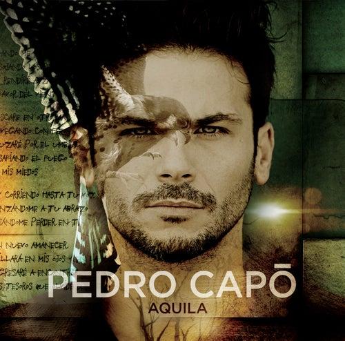 Aquila von Pedro Capó