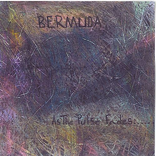 As The Pulse Fades... by Bermuda