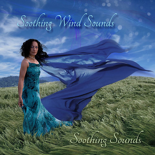 Soothing Wind Sounds de Soothing Sounds