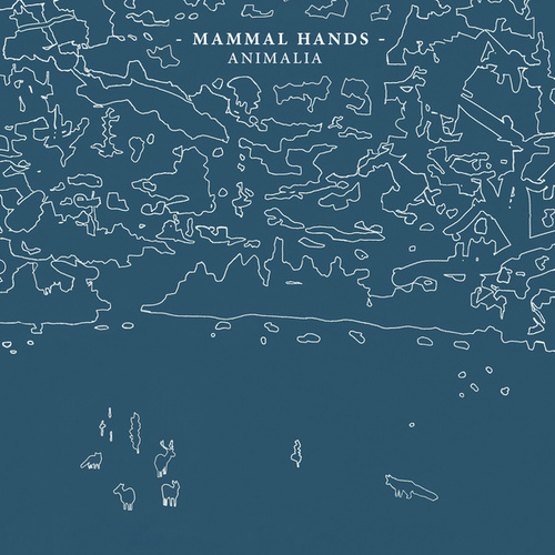 Animalia by Mammal Hands