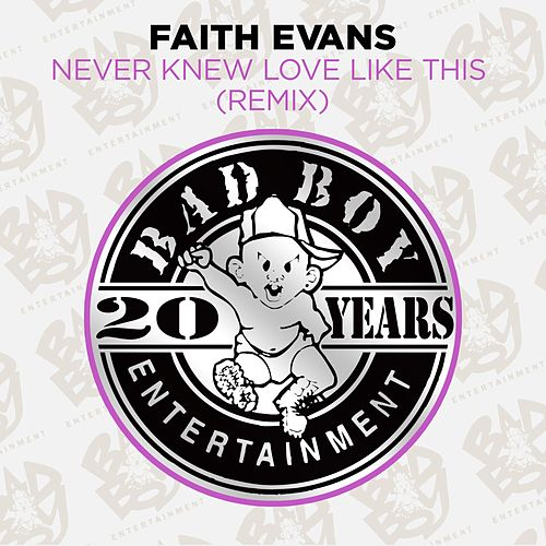 Never Knew Love Like This (Remix) by Faith Evans
