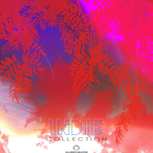 Indie Collection by Various Artists