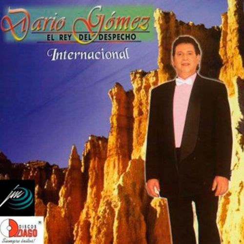 El Rey del Despecho - Internacional von Dario Gomez