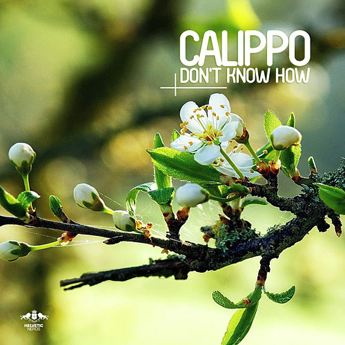 Don't Know How von Calippo