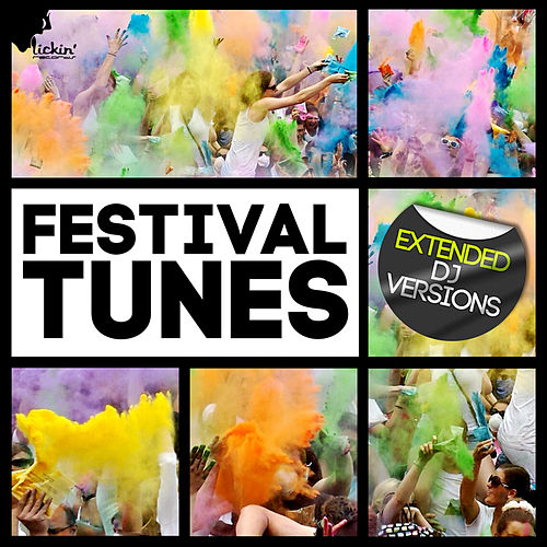 Festival Tunes von Various Artists