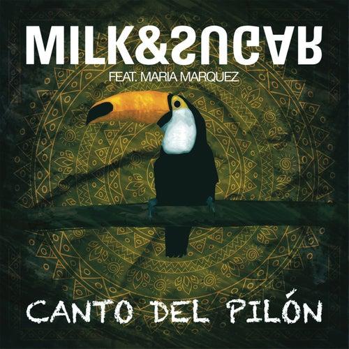 milk and sugar canto del pilon
