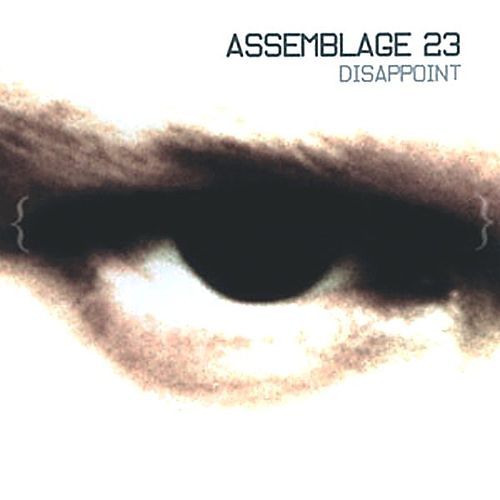 DISAPPOINT by Assemblage 23
