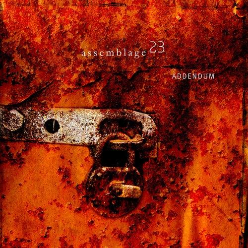 ADDENDUM by Assemblage 23