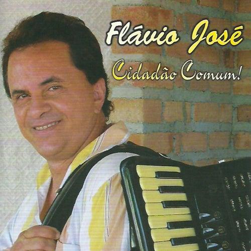 Cidadão Comum de Flavio José
