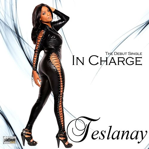 In Charge by Teslanay