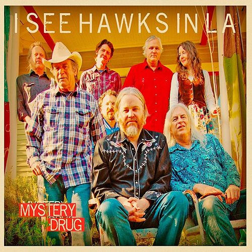 Mystery Drug by I See Hawks In L.A.