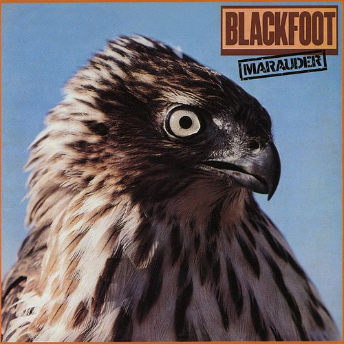 Marauder by Blackfoot