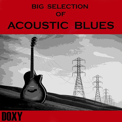 Big Selection of Acoustic Blues (Doxy Collection) de Various Artists