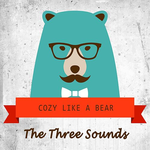 Cozy Like A Bear by The Three Sounds