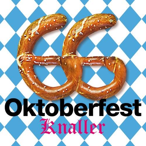 66 Oktoberfest Knaller 2014 de Various Artists