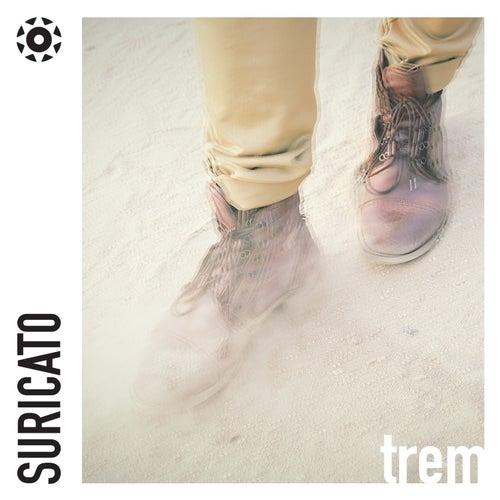 Trem - Single de Suricato