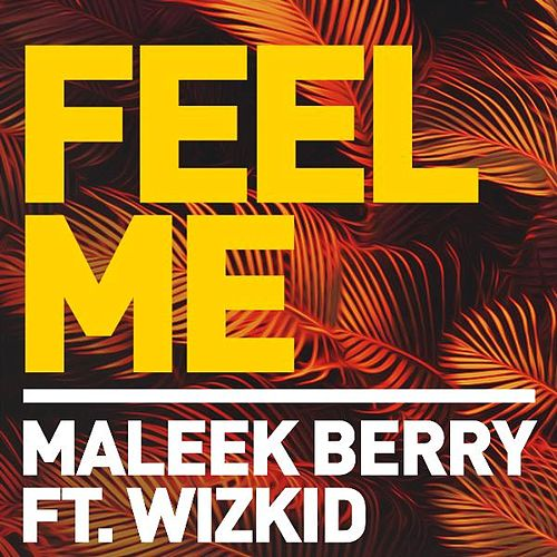 Feel Me (feat. Wizkid) by Maleek Berry