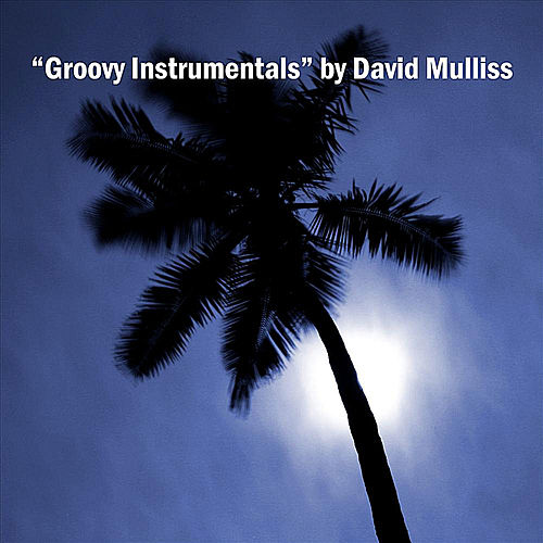 Groovy Instrumentals by David Mulliss
