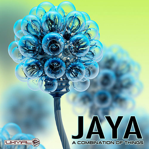 A Combination Of Things by Jaya