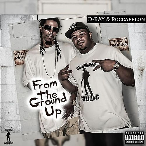 From the Ground Up de D-Ray