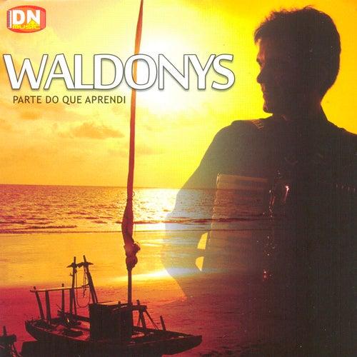 Parte do Que Aprendi von Waldonys