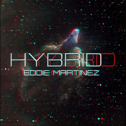 Hybrid by Eddie Martinez