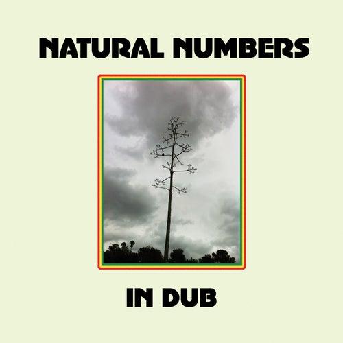 Natural Numbers in Dub de Natural Numbers