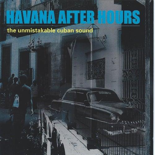 Havana After Hours de Various Artists