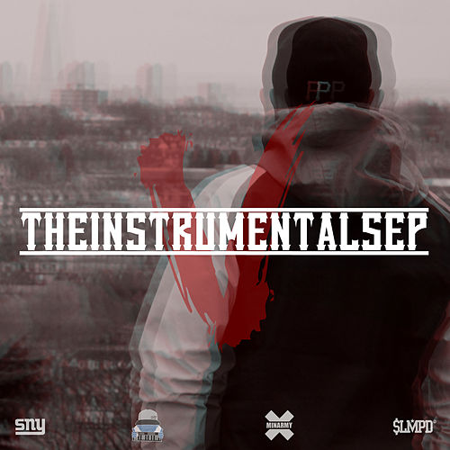 The Instrumentals 5 by Sny