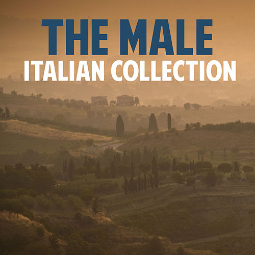The Male Italian Collection de Various Artists
