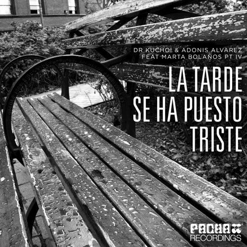 La Tarde Se Ha Puesto Triste Pt.IV von Dr Kucho!