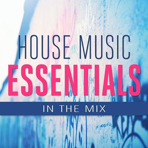House Music Essentials in the Mix von Various Artists